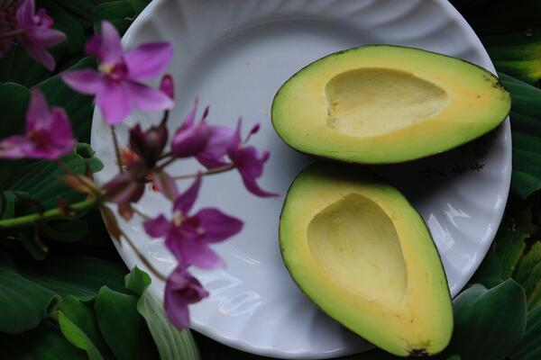 Avocado. 7 Brain Foods to Help You Focus and Boost Productivity this Summer.