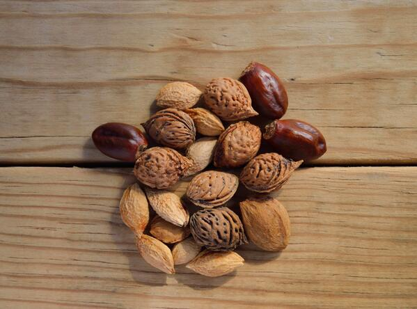 Nuts. 7 Brain Foods to Help You Focus and Boost Productivity this Summer